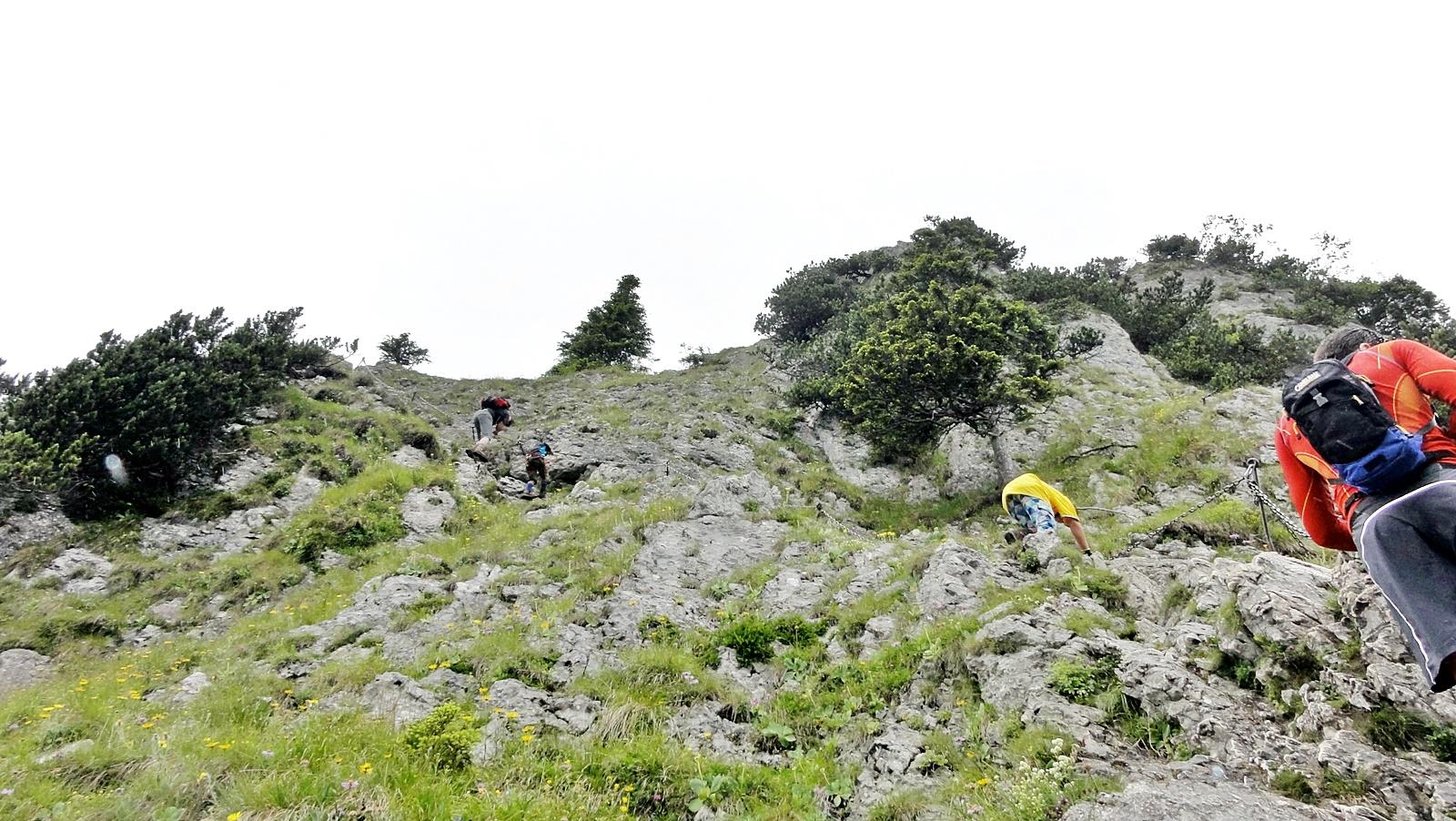 Ettaler Mandl Klettersteig Unfall : Ettaler mandl klettersteig a b 780hm 3:30h klettersteige